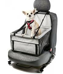 However A Dog Car Seat Is Still Product Relevant To Road Safety Especially In The Event Of Crash While Most People Would Undoubtedly Agree That