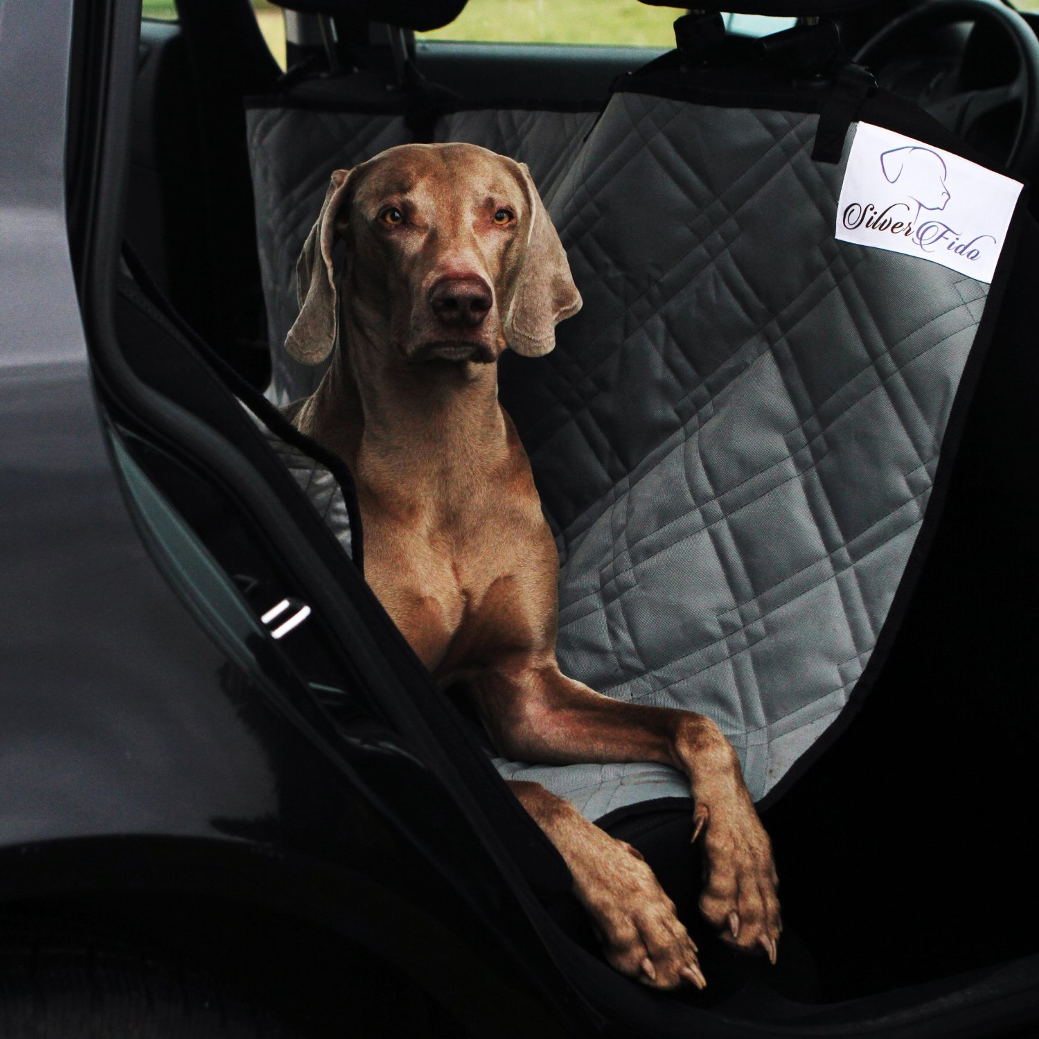 Dog Seat Covers For Cars by SilverFido
