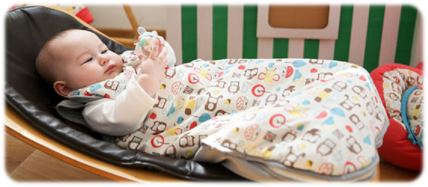 b9cfcf7d8 Car Seat Baby Bunting Bag - Warmth   Comfort For Your Baby